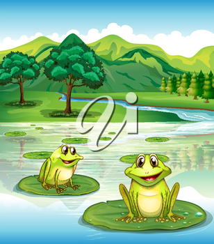 Illustration of two frogs above the waterlilies