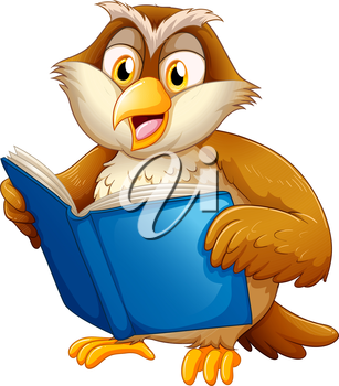 Illustration of an owl reading on a white bakcground
