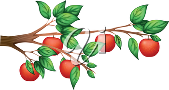 Illustration of an apple tree on a white background