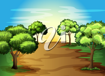 Illustration of the growing green trees in the forest