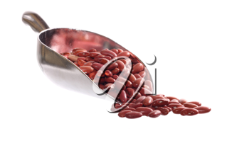 Shovel of beans isolated on a white background