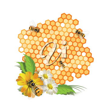 Royalty Free Clipart Image of Bees on a Honeycomb