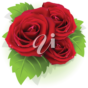 Royalty Free Clipart Image of Red Roses