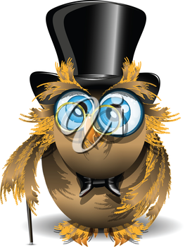 Royalty Free Clipart Image of an Owl in a Top Hat
