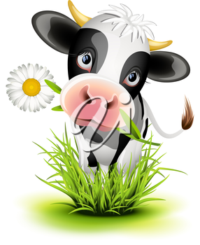 Royalty Free Clipart Image of a Holstein Cow With a Daisy in Grass