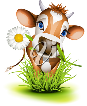 Royalty Free Clipart Image of a Jersey Cow in Grass With a Daisy