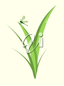 Royalty Free Clipart Image of a Dragonfly on a Plant