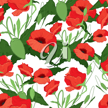 Vector illustration of red poppies seamless background