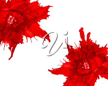 Two red flower in corners.Bright background hand drawn with red inks and watercolor paints. Color splashes and splatters create abstract flower.