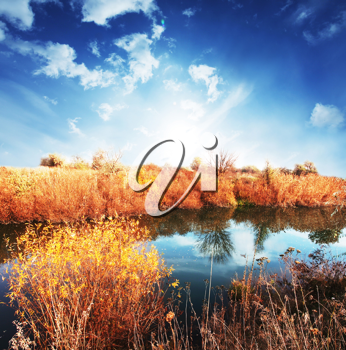 Royalty Free Photo of a Rural Lake Landscape