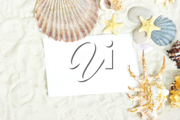 Royalty Free Photo of a Blank Postcard With Seashells