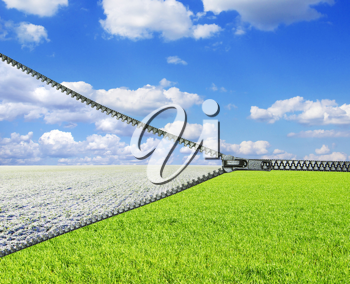 Royalty Free Photo of a Field