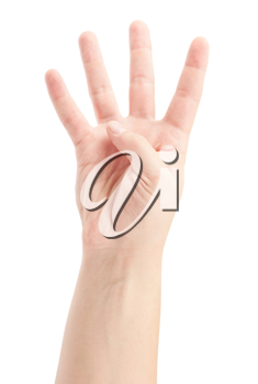 Royalty Free Photo of a Hand