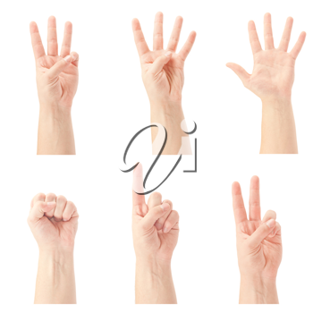 Royalty Free Photo of Hands Counting