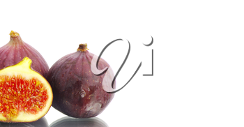fig isolated on a white