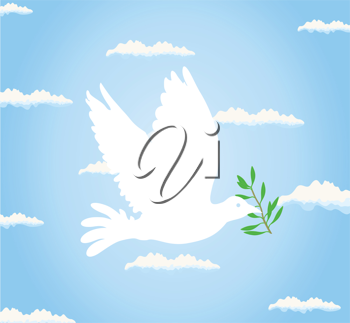 The white pigeon bears a branch. A vector illustration