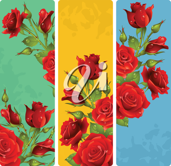 Red Rose frames. Vector set of floral vertical banners