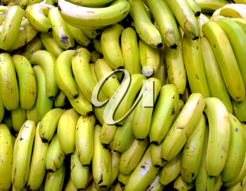 Royalty Free Photo of a Fruit Stand of Bananas
