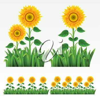 Royalty Free Clipart Image of Sunflower Elements