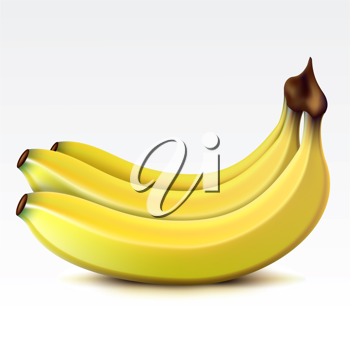Royalty Free Clipart Image of a Bunch of Bananas