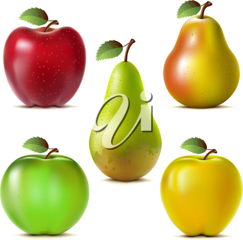 Set of red, yellow and green apples and pears. Mesh.