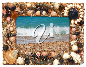 frame from marine cockleshells with the image of sea isolated on white background