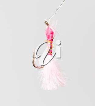 fly for fishing on a white background