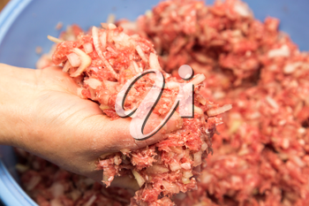 minced meat in a hand