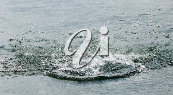 water splashing from a stone in the river