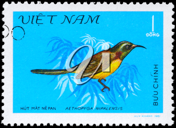 VIETNAM - CIRCA 1981: A Stamp shows image of a Bird with the inscription Aethopyga nipalensis from the series Nectar-sucking Birds, circa 1981