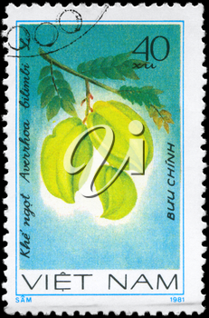 VIETNAM - CIRCA 1981: A Stamp printed in VIETNAM shows the  Bilimbi Averrhoa bilimbi, from the series Fruit, circa 1981