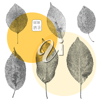 Leaves. Pattern with leaf. Hand Drawn vector
