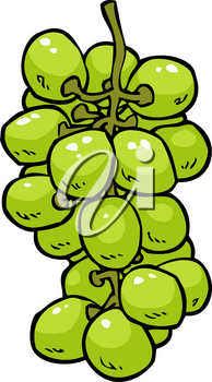 Cartoon doodle grapes on a white background vector illustration