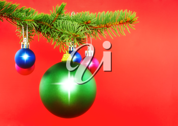 Christmas decoration-colour balls on fir branches on red background .