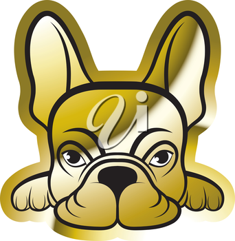 Royalty Free Clipart Image of a Gold Boston Terrier
