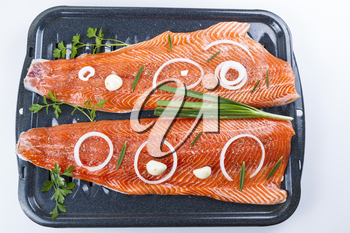 Wild Salmon Fillets in baking pan with herbs and spices on white background