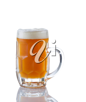 Vertical image of a Glass Stein filled with fresh amber beer on white with reflection