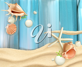 Seashells on sand and wooden background