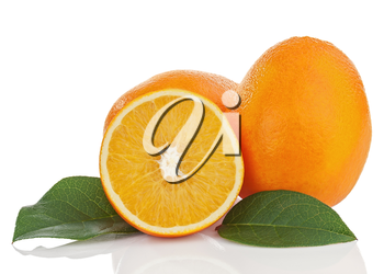 Orange fruits with green leaves isolated on white background. Closeup.