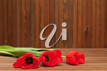 Red tulips on wooden background with space for text.