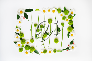Wreath frame from chamomile and chrysanthemum flowers, ficus leaves and ripe rowan on white background. Overhead view. Flat lay.