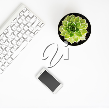 White office desk table with wireless aluminum keyboard, smart phone with black screen and succulent flower in pot. Top view with copy space. Flat lay.