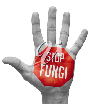 Stop Fungi - Red Sign Painted - Open Hand Raised, Isolated on White Background.