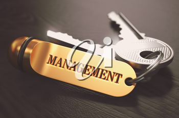 Management Concept. Keys with Golden Keyring on Black Wooden Table. Closeup View, Selective Focus, 3D Render. Toned Image.