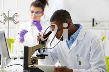 Technicians Carrying Out Research In Laboratory