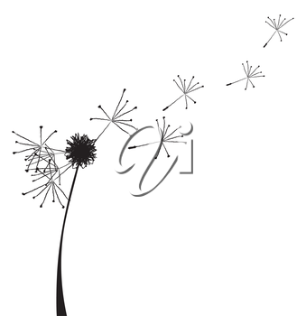 Vector illustration of a dandelion outline with fuzzes flying off it