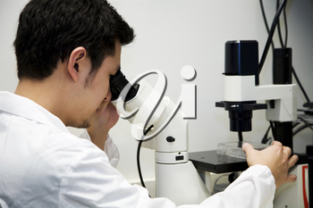 A scientist working at the lab looking into a microscope