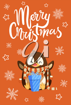 Merry Christmas penguin with presents in boxes vector. Cold weather snowflakes and star, gifts celebration of holiday, animal with knitted scarf and text