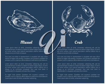 Seafood set with mussel and crab engraved sketch. Isolated on blue, hand drawn vector illustration in vintage style template restaurant menu icons