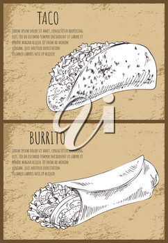 Stuffed taco and spicy burrito lavash with meat or vegetable filling. Sketch illustration on vintage background with text sample for snack bar vector